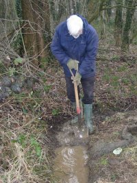 Howardian Local Nature Reserve Cardiff Clearing Water