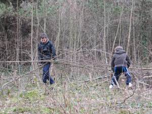 Howardian Local Nature Reserve - Cardiff ~ Thinning of Trees